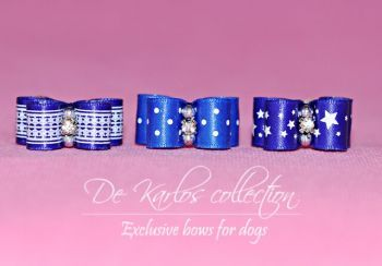 Set Puppy bows Blue 23